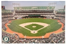 Oakland Athletics Artissimo O. Co Coliseum Stadium 22x33 Canvas