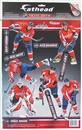 Fathead Washington Capitals 2011-2012 Team Set (Ovechkin, Backstrom, Laich)