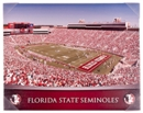 Florida State Seminoles Artissimo Gradient Stadium 22x28 Canvas