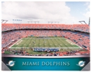 Miami Dolphins Artissimo Gradient Sun Life Stadium 22x28 Canvas - Regular Price $69.99!!!