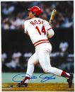 Image for  Pete Rose Autographed Cincinnati Reds 8x10 Baseball Photo