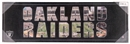 Oakland Raiders 10x30 Artissimo - Regular Price $49.99 !!!