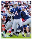 Image for  Ryan Fitzpatrick Buffalo Bills 8x10 Football Photo