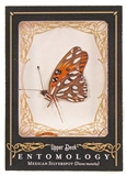 2009 Upper Deck Goodwin Champions #ENT1 Mexican Silverspot Entomology SP