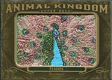 2011 Upper Deck Goodwin Champions Animal Kingdom Patches #AK45 Peacock LC