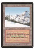 Magic the Gathering Beta Single Taiga UNPLAYED (NM/MT)