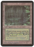 Magic the Gathering Alpha Single Bayou UNPLAYED (NM/MT)