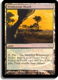 Magic the Gathering Promo Single Windswept Heath Foil (DCI)