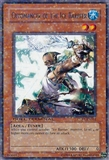 Yu-Gi-Oh Duel Terminal 1 Single Cryomancer of the Ice Barrier Rare DT01