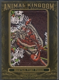 2011 Upper Deck Goodwin Champions #AK97 Mountain Pygmy Possum Animal Kingdom Patch
