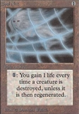 Magic the Gathering Alpha Single Soul Net - NEAR MINT (NM)