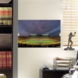 "Fathead Michigan Teammate Mini Stadium Mural Wall Graphic 17"" x 11""  (Lot of 10)"