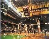 "Larry Bird Autographed Boston Celtics ""Boston Garden"" 8x10 Photo (Mounted Memories)"