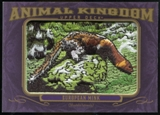 2012 Upper Deck Goodwin Champions Animal Kingdom Patches #AK176 European Mink