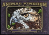 2012 Upper Deck Goodwin Champions Animal Kingdom Patches #AK102 Red Tailed Hawk LC