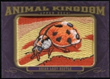 2012 Upper Deck Goodwin Champions Animal Kingdom Patches #AK126 Asian Lady Beetle LC
