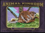 2012 Upper Deck Goodwin Champions Animal Kingdom Patches #AK129 North American Beaver LC