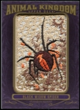 2012 Upper Deck Goodwin Champions Animal Kingdom Patches #AK136 Black Widow Spider LC
