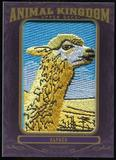 2012 Upper Deck Goodwin Champions Animal Kingdom Patches #AK146 Alpaca LC
