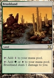 Magic the Gathering 10th Edition Single Brushland - NEAR MINT (NM)
