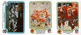 1979 Fleer Team Action NFL Football Complete Set (NM-MT)