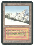 Magic the Gathering Alpha Single Taiga - HEAVY PLAY (HP)