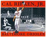 Cal Ripken Jr. Autographed Baltimore Orioles 16x20 Photo (Steiner)