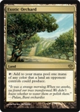 Magic the Gathering Conflux Single Exotic Orchard UNPLAYED (NM/MT)