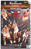Fathead Chicago Bulls 2011-2012 Team Set (Lot of 10) (Rose, Noah)