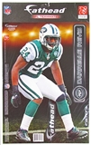 Fathead Darrelle Revis 2011 Teammate Player