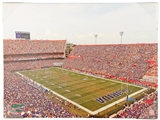 Artissimo University of Florida Gators Ben Hill Griffin Stadium 24x18 Canvas