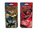 Pokemon XY Theme Deck - Set of 2