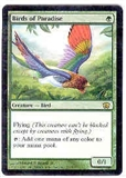 Magic the Gathering 8th Edition Single Birds of Paradise FOIL