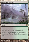 Magic the Gathering 9th Edition Single Llanowar Wastes - NEAR MINT (NM)