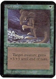 Magic the Gathering Alpha Single Giant Growth UNPLAYED (NM/MT)