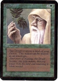 Magic the Gathering Alpha Single Ley Druid - NEAR MINT (NM)