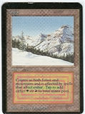 Magic the Gathering Alpha Single Taiga - SLIGHT PLAY (SP)