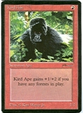 Magic the Gathering Arabian Nights Single Kird Ape UNPLAYED (NM/MT)