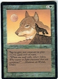 Magic the Gathering Arabian Nights Single Wyluli Wolf (b) UNPLAYED (NM/MT)