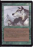 Magic the Gathering Beta Single Aspect of Wolf LIGHT PLAY (NM)