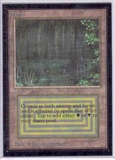 Magic the Gathering Beta CE Single Bayou (MINT)