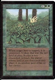 Magic the Gathering Beta Single Kudzu - NEAR MINT (NM)