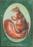 Magic the Gathering Unglued Single Squirrel - NEAR MINT (NM)