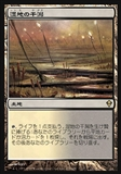 Magic the Gathering Zendikar Single Marsh Flats JAPANESE - NEAR MINT (NM)