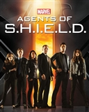 Marvel Agents of S.H.I.E.L.D. Season One Trading Cards 12-Box Case (Rittenhouse 2015) (Presell)