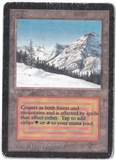 Magic the Gathering Beta Single Taiga - HEAVY PLAY (HP)