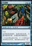 Magic the Gathering Lorwyn CHINESE Single Sower of Temptation - NEAR MINT (NM)