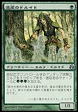 Magic the Gathering Morningtide JAPANESE Single Heritage Druid - NEAR MINT (NM)