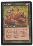 Magic the Gathering Mercadian Masques JAPANESE Single Food Chain - MODERATE PLAY (MP)