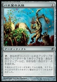 Magic the Gathering Lorwyn Single Springleaf Drum (JAPANESE) - NEAR MINT (NM)